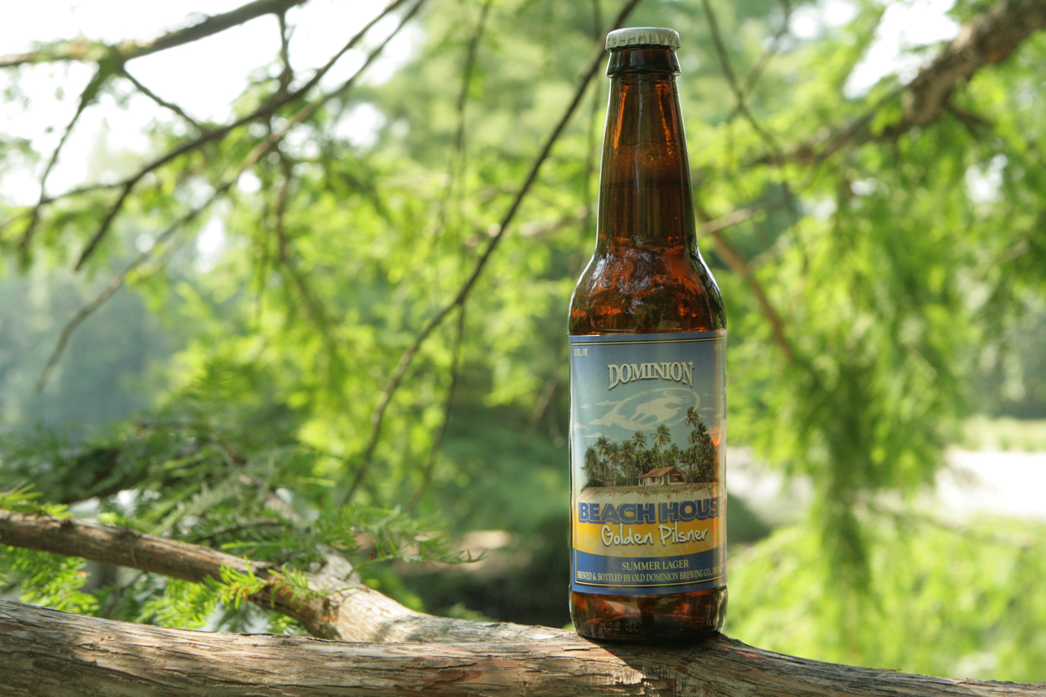 Enjoy a seasonal summer Beach House beer.
