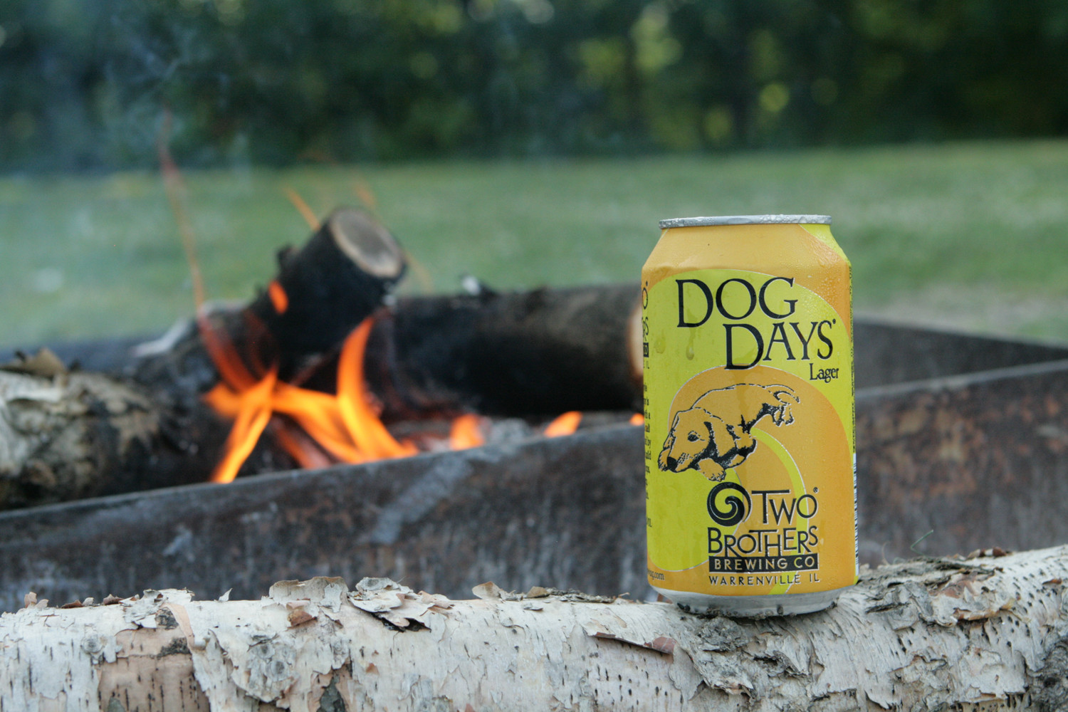 Two Brothers' Dog Days Dortmunder lager is a good summer beer.