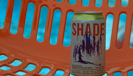 Madtree Shade Pink Beer