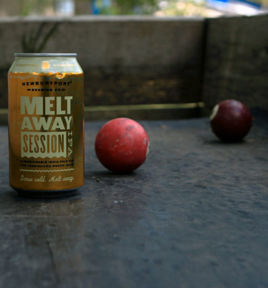 Melt Away Summer Session IPA from Newburyport Brewing.
