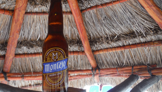 Montejo Mexican Beer
