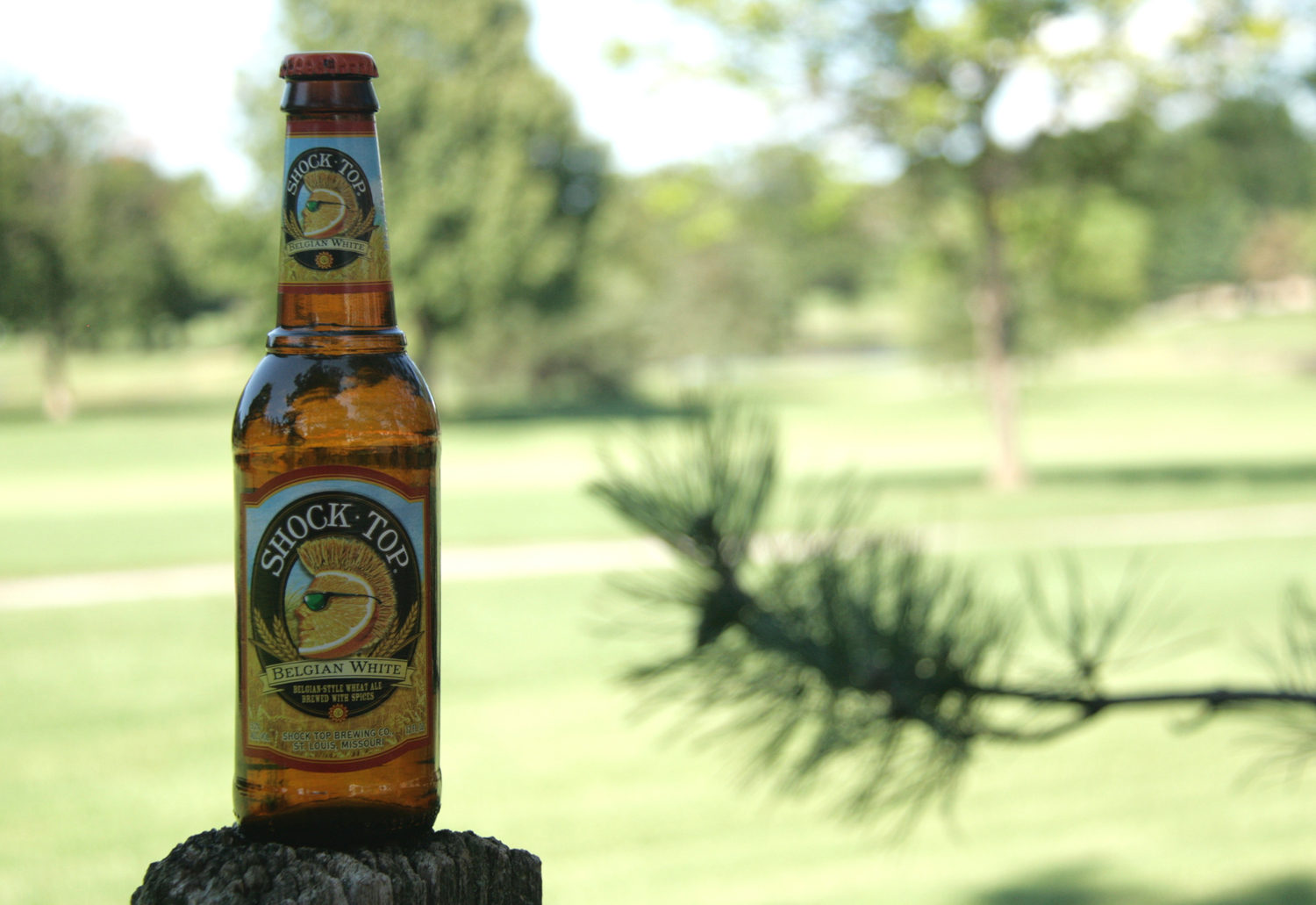 Take Shock Top summer beer belgian white to the park.