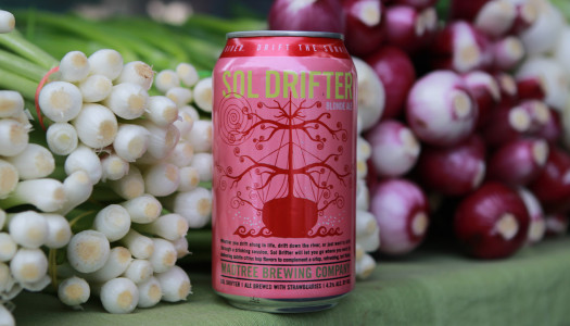 Sol Drifter Summer Strawberry Beer