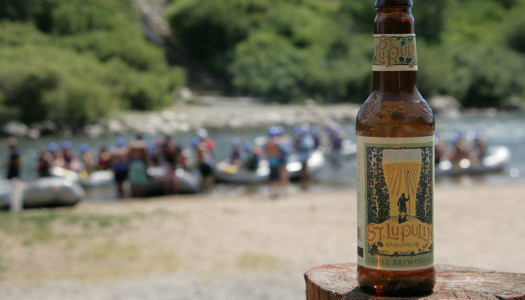 St. Lupulin Summer American Pale Ale