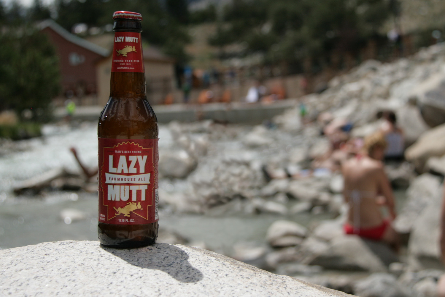 Be lazy this summer with a perfect summer farmhouse ale seasonal beer.
