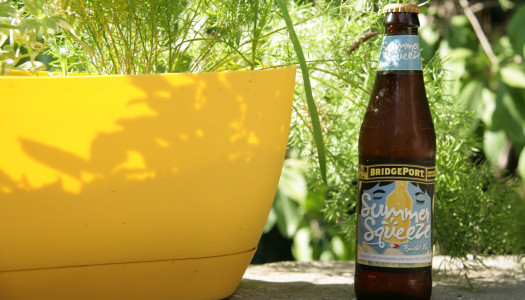 Summer Squeeze Summer Citrus Beer