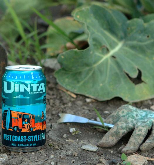 West Coast-Style IPA summer beer.